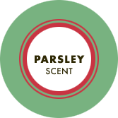Parsley Scent